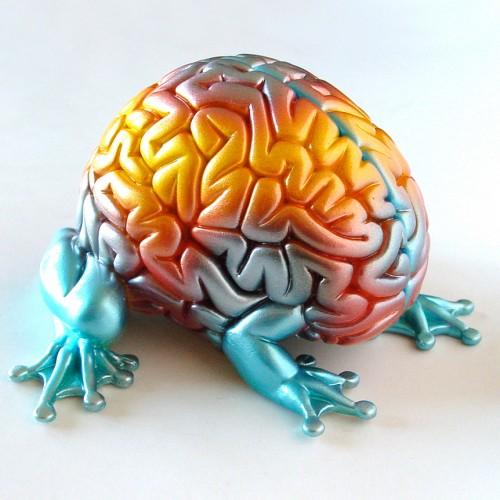 Los secretos del aprendizaje y la rápida memorización